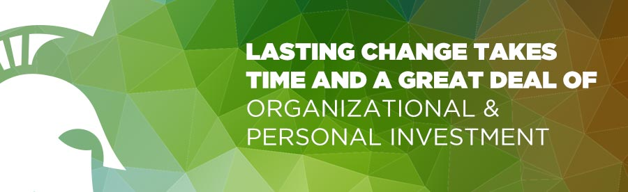 Lasting change takes time and a great deal of organizational and personal investment